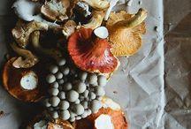 Autumn / by Maja Huse