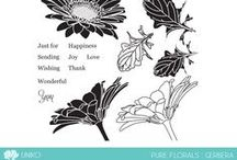 Uniko Pure Florals: Gerbera / Projects featuring Uniko's Pure Florals: Gerbera clear stamp set