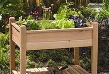 Urban Homesteading / DIY practices to help cultivate a healthy and happy home. / by Wayfair.com