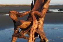 Root / wood/ driftwood craft