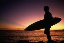 surf• beach