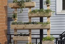 Trädgård. Krukor och växter. / Garden. Pots and plants / Trädgård. Inne och ute växter o krukor. / Garden. pots and plants in and out.