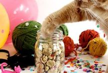 Recipes for Your Cat / Treat your cat to some delicious snacks.