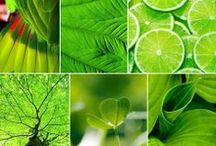 Green ♻