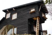 house / architecture