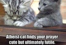 atheist cat / Hoomans are Stoopids