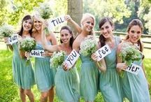 Mint Green Inspiration / Mint Green is a classic and refreshing Wedding Colour that is perfect for Spring Weddings! Check out these inspirations and see how you can incorporate small touches of colour in your wedding to make your day stand out!
