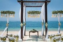 Tropical Chic Wedding Inspirations / Who ever said Tropical Weddings need to be full of bright coloured florals only? Why not go the naturalist way and use bright greens and white for a wedding backdrop that exudes nature and purity! Here are some simple and extravagant ways to make this colour scheme work for your Wedding!