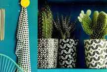 Cactus Interiors / The cactus is back. That prickly, colourless plant? Yes, this prickly beauty is a must have for your on-trend decor. Combine the cactus with other plants and flowers to form a beautiful focal point of greenery in your home. Vary jars and cloches, with various sizes and colours. A surprising piece of design within the home.
