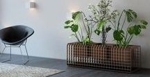 Vases and Vertical Gardens / Vases and Vertical Gradens in 3D Grating with premium finishings.