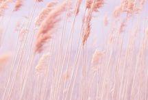 Soft / beautiful colours