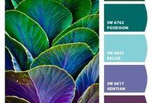 oh, Pretty Colors!