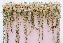 Esküvő I.
