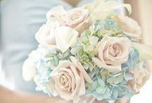 Esküvő II.