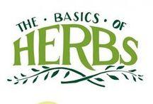 Healing Herbs · Hierbas Curativas