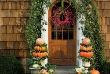 Pumpkin Patch / We love anything pumpkin and I'm always looking for more recipes and decorating ideas. #Pumpkinrecipes #pumpkinyummy  Toni Weidman. Sailwinds Realty #trinitytoni