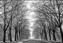 PhotoLove - Landscape Photography