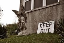 Haunted Asylums & Hospitals