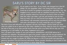 Saru - Adopted! / Hi, my name is now Saru.