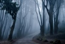 Pathways To Nowhere