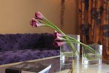"5 star Hotel ""du lac"" / Hotel du lac-5 Star Ioannina-Greece"