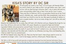 Kisa - Adopted! / Medical need - Shiba Inu - 8 yr old - female - black & tan