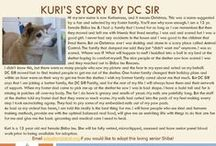 Kuri - Adopted! / Female - 13 Years Old - Red - Special Medical Needs - Follow her story here: http://on.fb.me/1TjRoyd