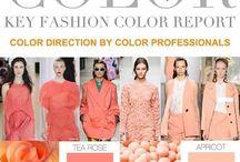 2017 Spring/Summer Fashion