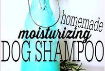 Dog Health (Natural Ideas)