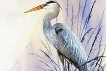 For the love of Herons