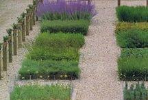 cool gardens :  fruit n veg
