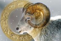 zodiac  aries   / by Nancy Pooler