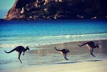 Australien!!!!!