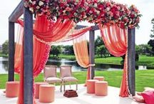 Summertime / Carefree and breezy, summer is the season for weddings.  Here are some that we had the pleasure of designing.