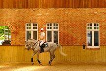 Hevosunelmia / Hienoja hevosia ja talleja.. ehkä mullaki on joskus