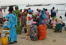 Gambia, West Africa / Gambia, located on Africa's West Coast, is a fascinating destination.