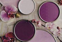 Pick Purple