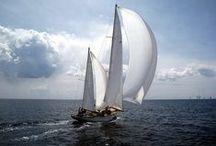 Hire Boat - Hotel San Marco / Una vacanza a Bibione mette a disposizione vantaggiose opportunità per piacevoli gite in barca. La presenza di strutture attrezzate per il noleggio di barche a vela e imbarcazioni per pesca sportiva, offre la possibilità di uscire in mare per una coinvolgente escursione.