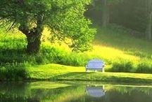 Beautiful Garden / Upeita puutarhoja;)