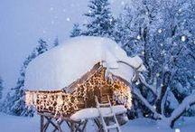 Joulu valot  Christmass light