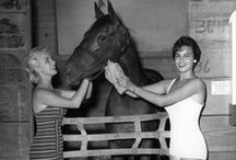 Vintage Pictures / Historic pictures at Del Mar / by Del Mar Racetrack