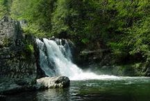 Waterfall Hikes / by Smoky Mountains