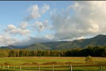 Cades Cove / Drive around this 11 mile loop and view wildlife, cabin, mountain views, wildflowers and so much more! Also has great hikes and fields to picnic in. / by Smoky Mountains