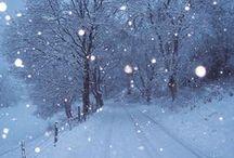 Winter Wonderland / White winter beauty