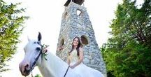 Wales Manor vineyard & winery- wedding venue / Wedding venue, McKinney, TX 75071