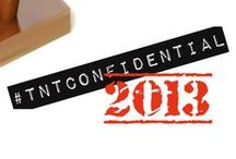 TnT Confidential Authors 2013 / All the authors that have passed through the blog this year