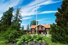 Sweden / by Inga Thunberg