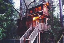 Treehouse ideas / Want to make your kid the best treehouse? Get inspired here !
