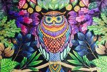Livros de Colorir / Coloring Pages, Secret Garden Book