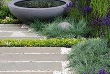 Jane's Garden / Ideas for the small rear garden of a Cheshire barn conversion home